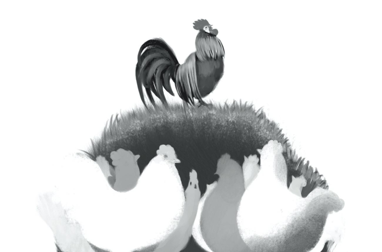 La felicità del pollaio Monica Pais